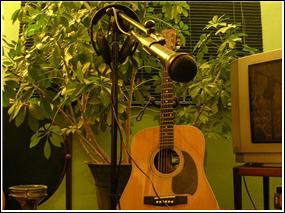 GTT Vic guitar